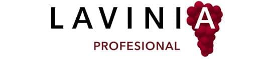 mejores-tiendas-vino-madrid-lavinia